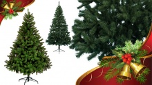 50% off 210cm Christmas Tree ($50 instead of $100)
