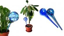 60% off Set of 2 Aqua Globes ($6 instead of $15)