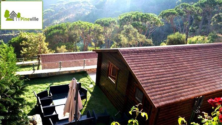 Bungalow Accommodation At Pineville Lebanon Gosawa Dubai